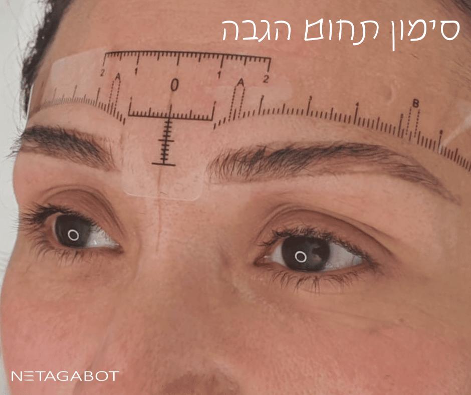 שיטת שערה - אסתטיקה לגבות
